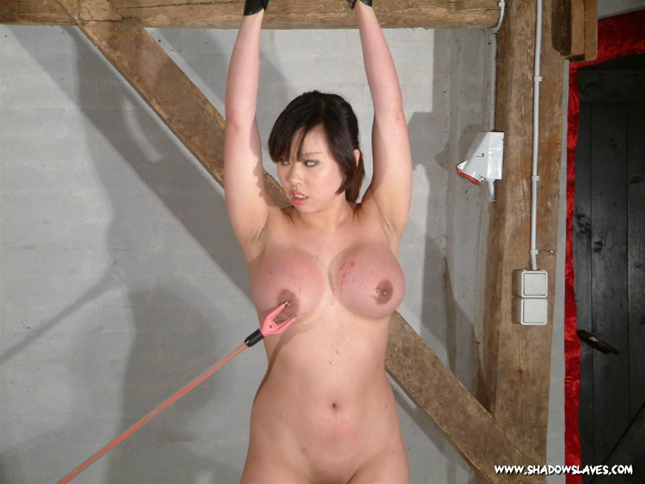 asian domination sex you porn