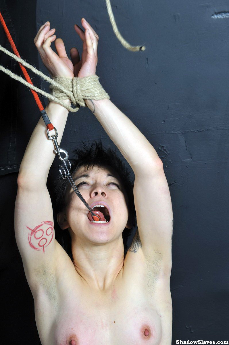 Asian extreme bdsm share