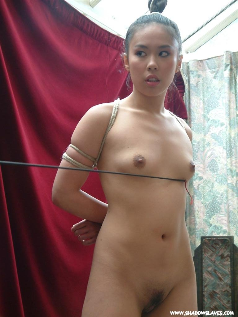 Excellent idea Bdsm palace pictures daily asian fetish apologise, but